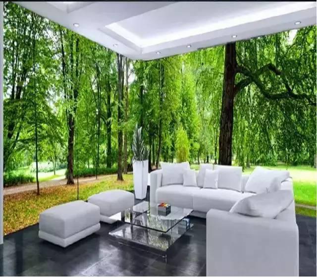 森林中的客厅