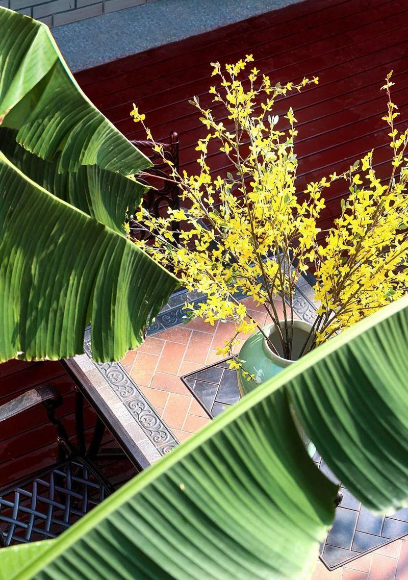 中国院子独栋别墅装修实景案例-后院