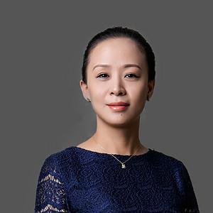 高级主任设计师宋辉