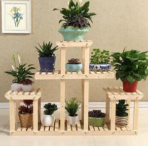 常见的室内空气净化植物有哪些