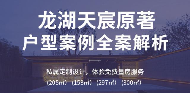 龙湖天宸原著