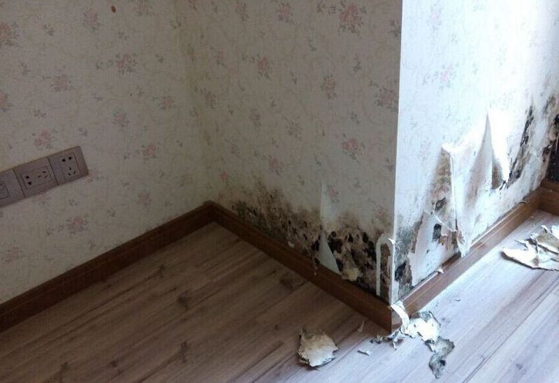 房屋装修墙体为什么会开裂发霉