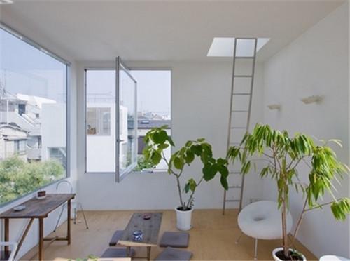 家居植物有什么作用?(图一)